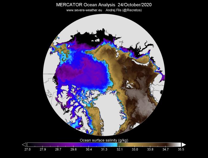 arctic-sea-ice-winter-2020-2021-jet-stream-united-states-europe-ocean-salinity-analysis
