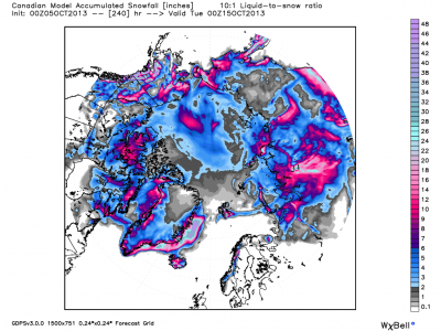 cmc_snow_acc_arctic_41