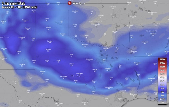 winter-storm-texas-snow-united-states-ecmwf-model