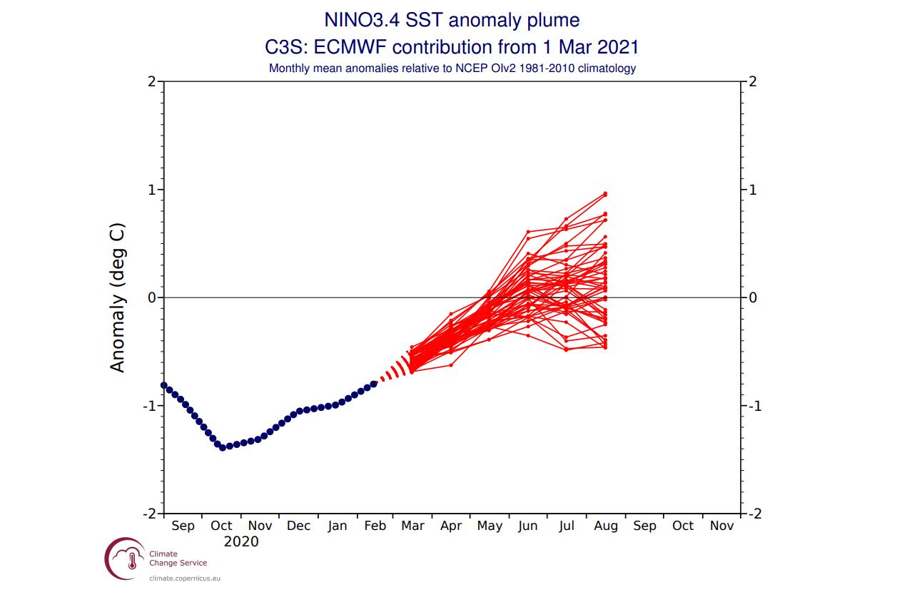 enso-temperature-anomaly-forecast-ecmwf-spring-summer-2021