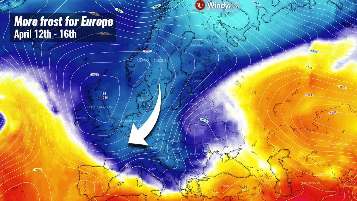 new-cold-wave-europe-snow-frost-damage