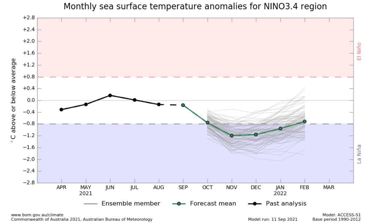 bom-enso-autumn-winter-forecast-graph