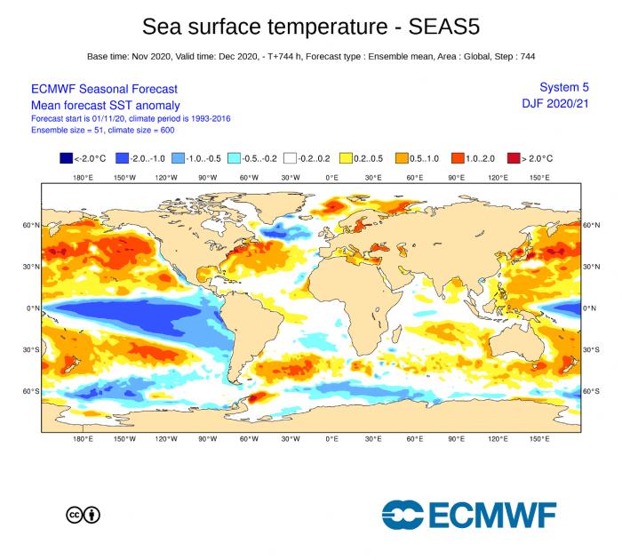 winter-forecast-ecmwf-ocean-temperature-anomaly