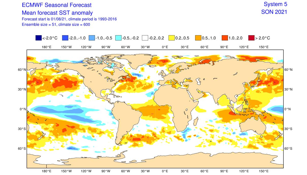ecmwf-fall-forecast-global-ocean-temperature-anomaly