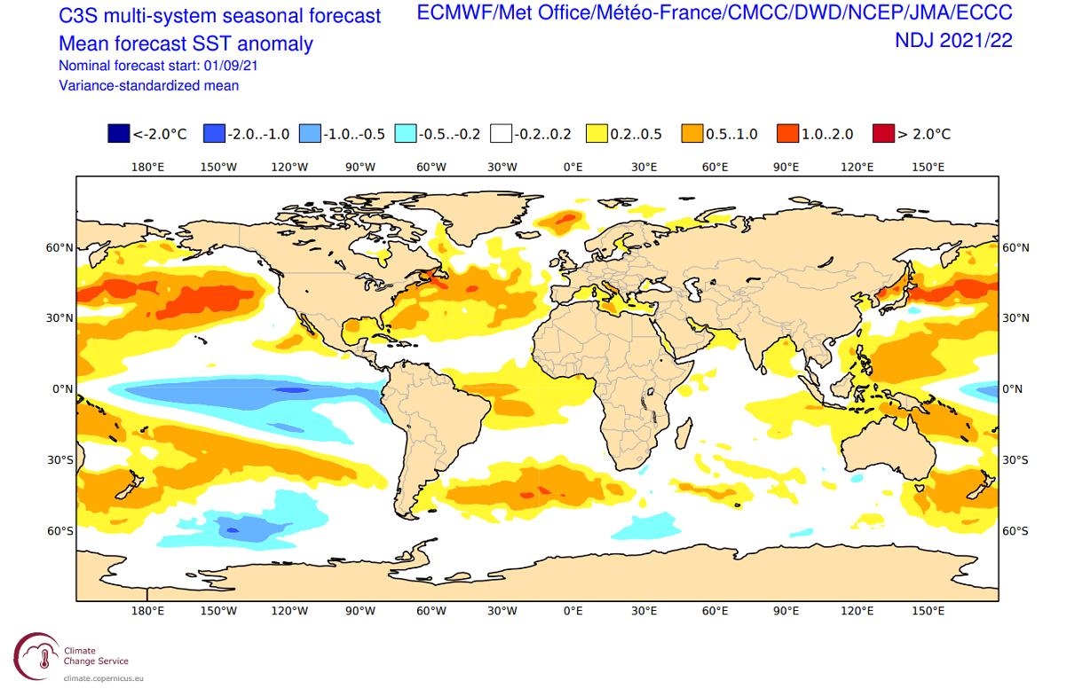 winter-forecast-multi-model-ocean-temperature-anomaly
