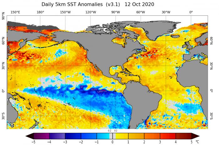 hurricane-atlantic-epsilon-zeta-sea-temperature-anomaly