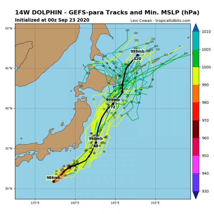 storm-dolphin-model-tracks