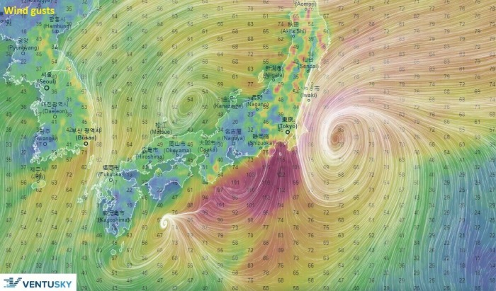 storm-dolphin-winds-Friday