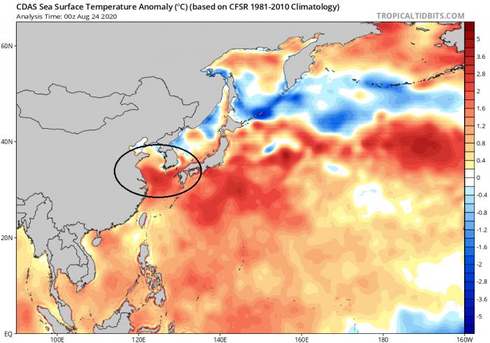typhoon-bavi-sea-temperature-anomaly