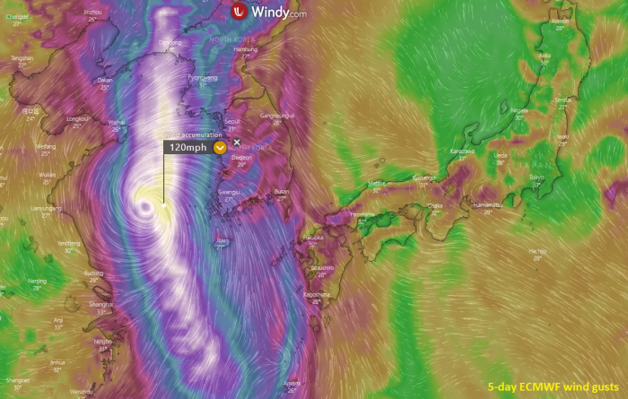 typhoon-bavi-wind-gusts