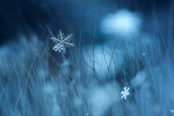 20170103_snowflake_4