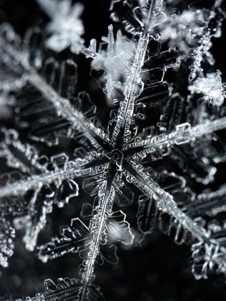 20170108_snowflake_Gramatikov_2