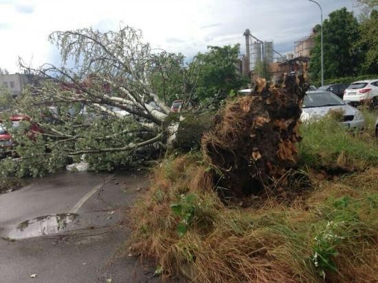 20140430_Nonantola_tornado_damage_1