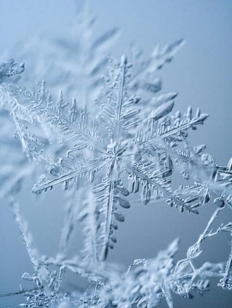 20170108_snowflake_Gramatikov_3