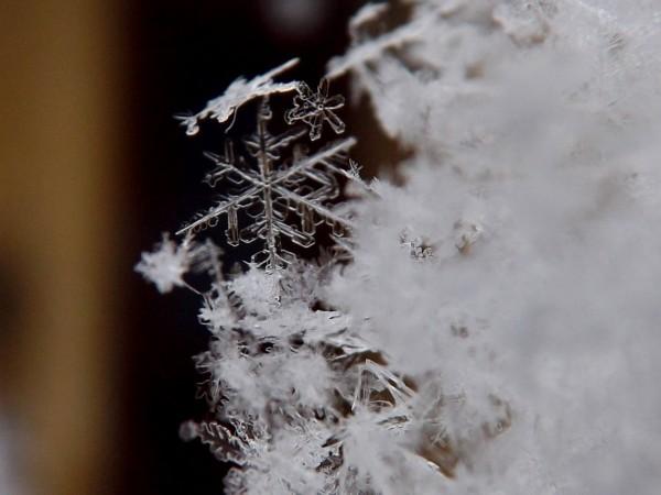 20170111_snowflakes_1