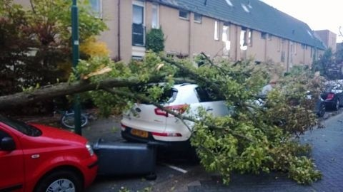 wijk_tornado_damage_forum_rtvutrecht_2