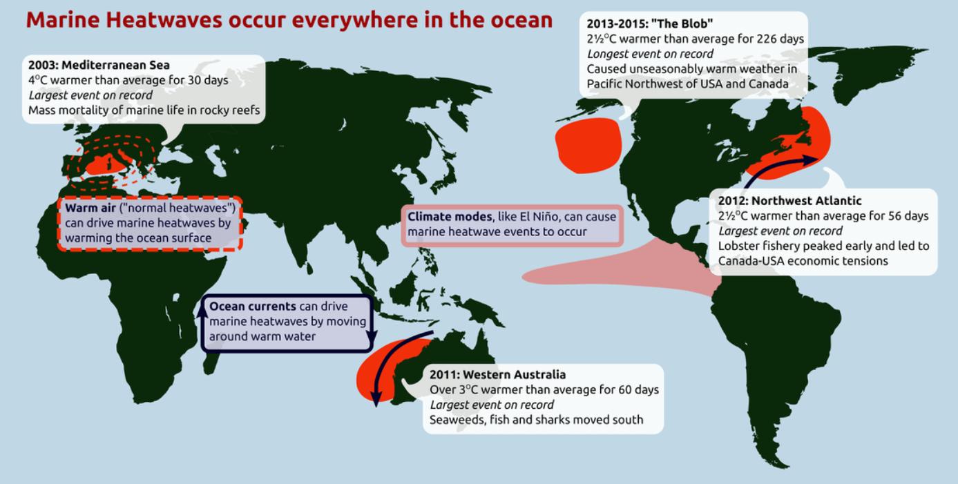 Global-oceanic-heatwave-events-map