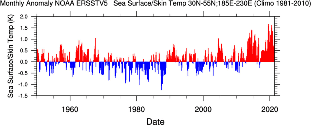 Ocean-heatwave-north-pacific-60-year-temperature-graph-and-trend