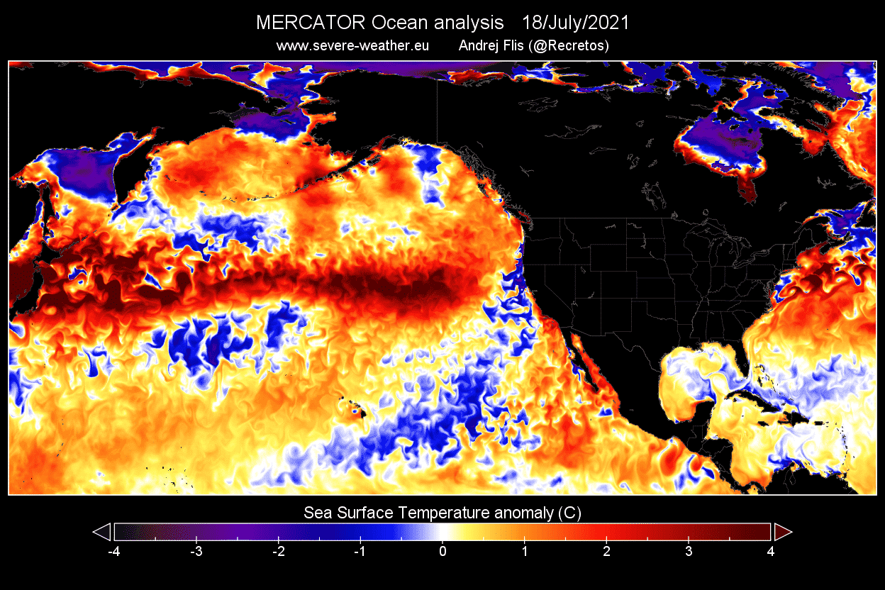 Ocean-heatwave-north-pacific-latest-temperature-anomaly-analysis