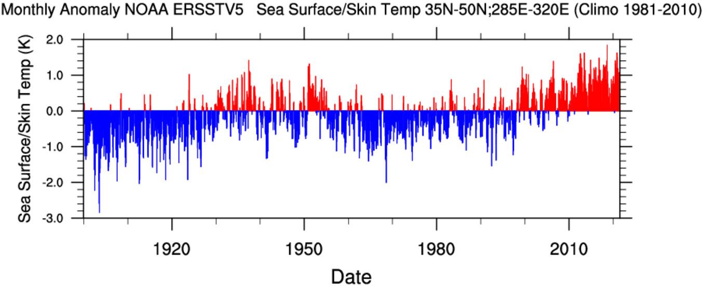 gulf-stream-collapse-temperature-anomaly-northeast-coast-united-states