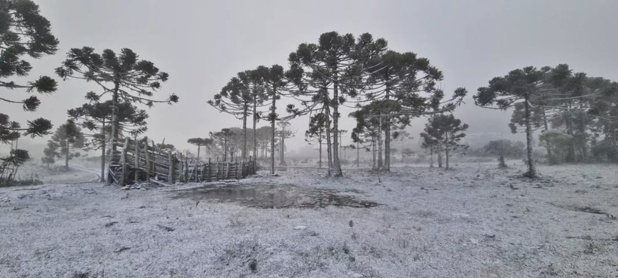 south-america-cold-weather-winter-outbreak-brazil-snowfall-photo