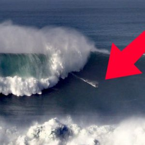 Monster 15+ meter waves in Nazaré, Portugal on Nov 20th!