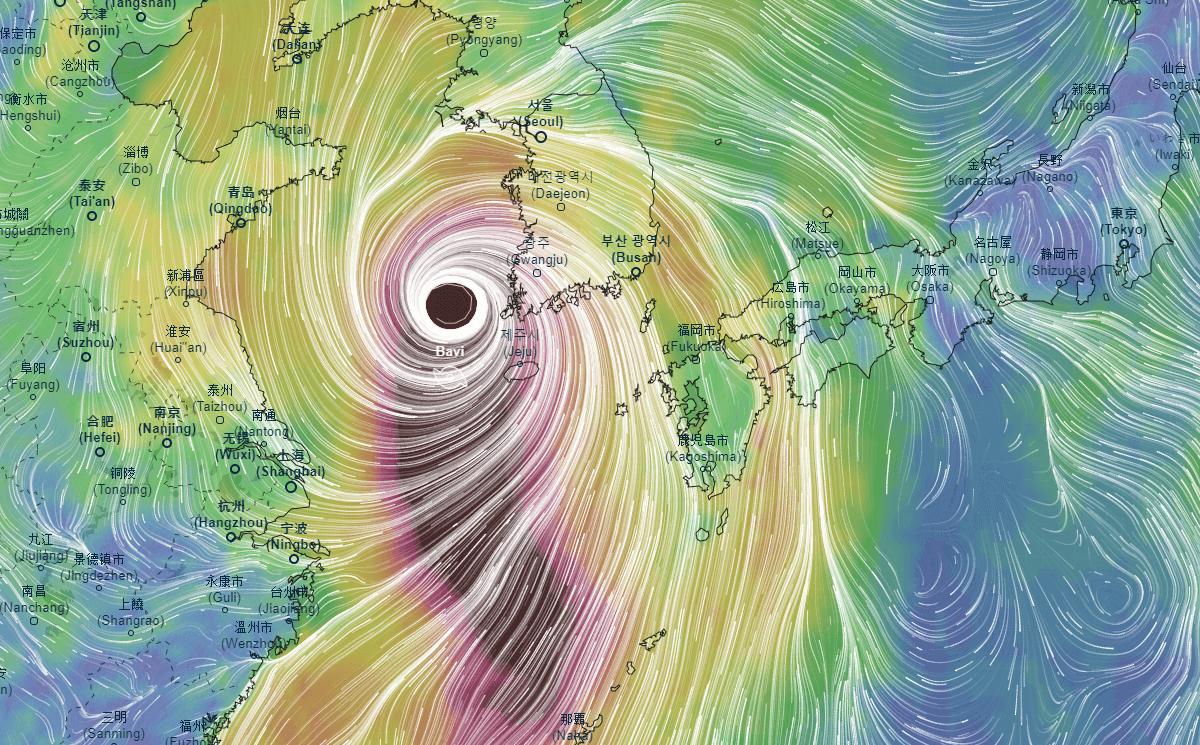 typhoon bavi wind gusts