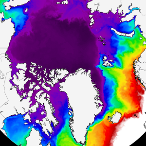 arctic sea ice winter 2020 2021 jet stream united states europe