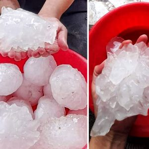 large giant hail libya person hands