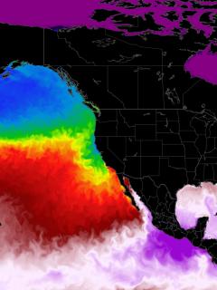 Ocean heatwave north pacific temperature anomaly united states canada